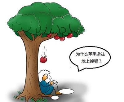 为什么果实成熟后会掉下来?