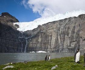 为什么南极会有绿洲?