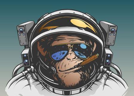 为什么用猴子作为太空实验动物?