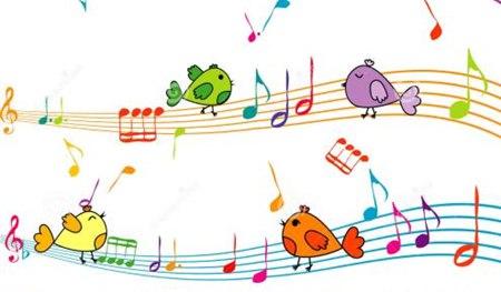 鸟儿为什么要唱歌_小鸟歌唱的原因