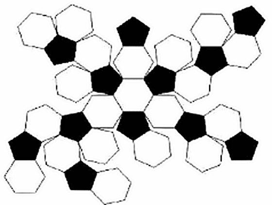 黑白相间的意思_为什么足球是黑白两色的_足球黑白相间代表什么意思_十万个为什么
