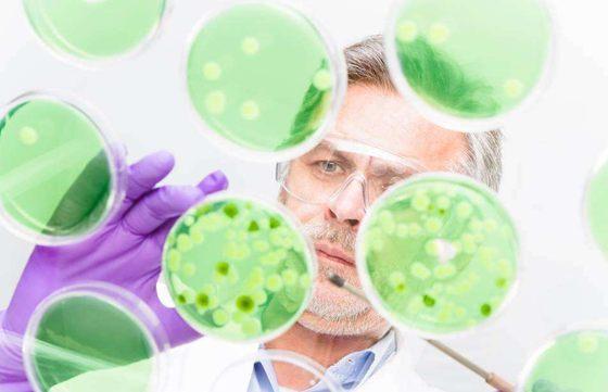 为什么长寿和遗传基因有关_怎样才能长寿