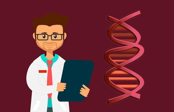 为什么基因工程也叫遗传工程_什么是基因