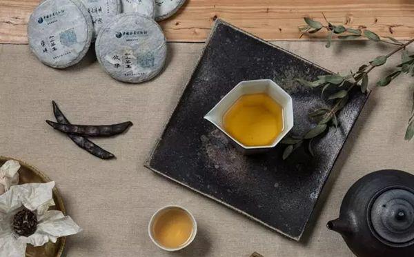 为什么叫云南七子饼茶图片